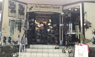 The Bowerbird of Montville shopping Sunshine Coast, Queensland